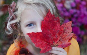 Familienwochen_Herbst-346x220.jpg