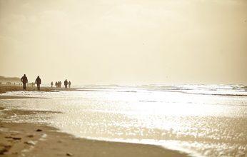 beach-2470591_1920-346x220.jpg