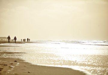 beach-2470591_1920-360x250.jpg