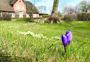 Titel_Frühling-360x250.jpg