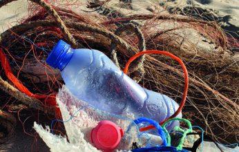 Familienwochen-Beach-CleanUp-346x220.jpg